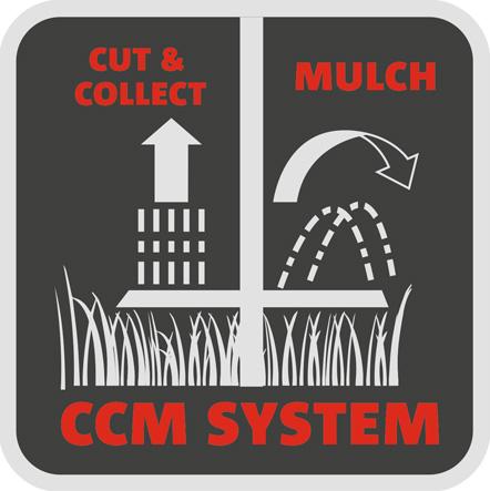 CCM-System